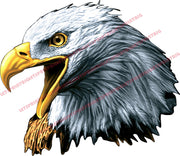 American Bald Eagle Head Wall Art Wall Decal Indoors Outdoors Large