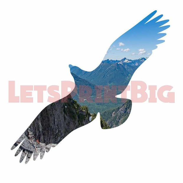 Eagle Silhouette Background Image Large Wall Decals
