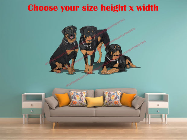 3 Rottweilers Art Wall Decal