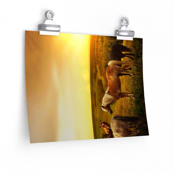 Horses in Pasture as Sunset Poster - 7 Size choices - Let's Print Big