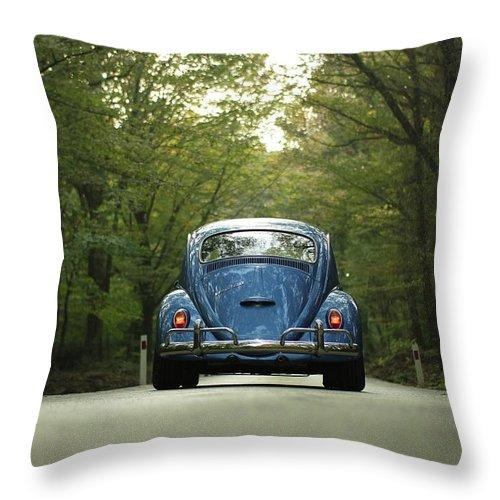 Bug On The Road - Throw Pillow