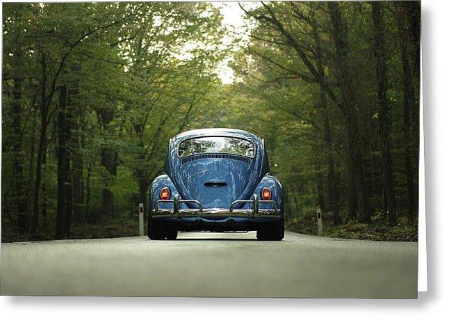 Bug On The Road - Greeting Card