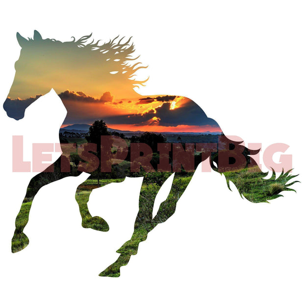 Horse Silhouette Valley Background Image Large Wall Decals