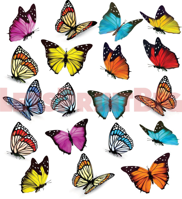 Large Butterfly Contour Cut Wall Decal Removeable Repositionable Large Sizes