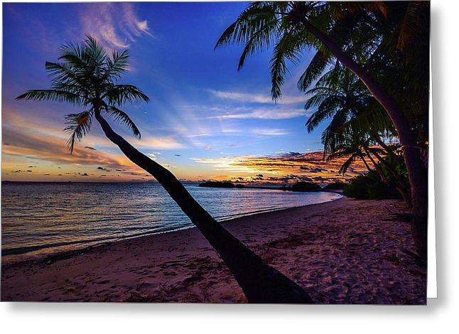 Palm Trees Beach Sunset - Greeting Card