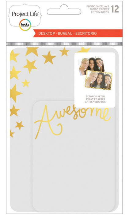 Project Life Photo Overlays 12/Pkg Desktop Edition 380360 | Maple Treehouse