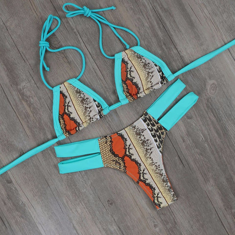 Snake Design Two Piece Swimsuit