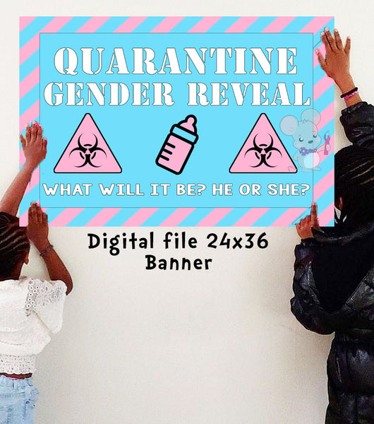 Quarantine Gender Reveal Banner - DIGITAL FILE ONLY - INSTANT DOWNLOAD - Itty Bits Designs