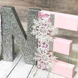 Winter ONEderland Birthday Letters - Pink & Silver - Itty Bits Designs