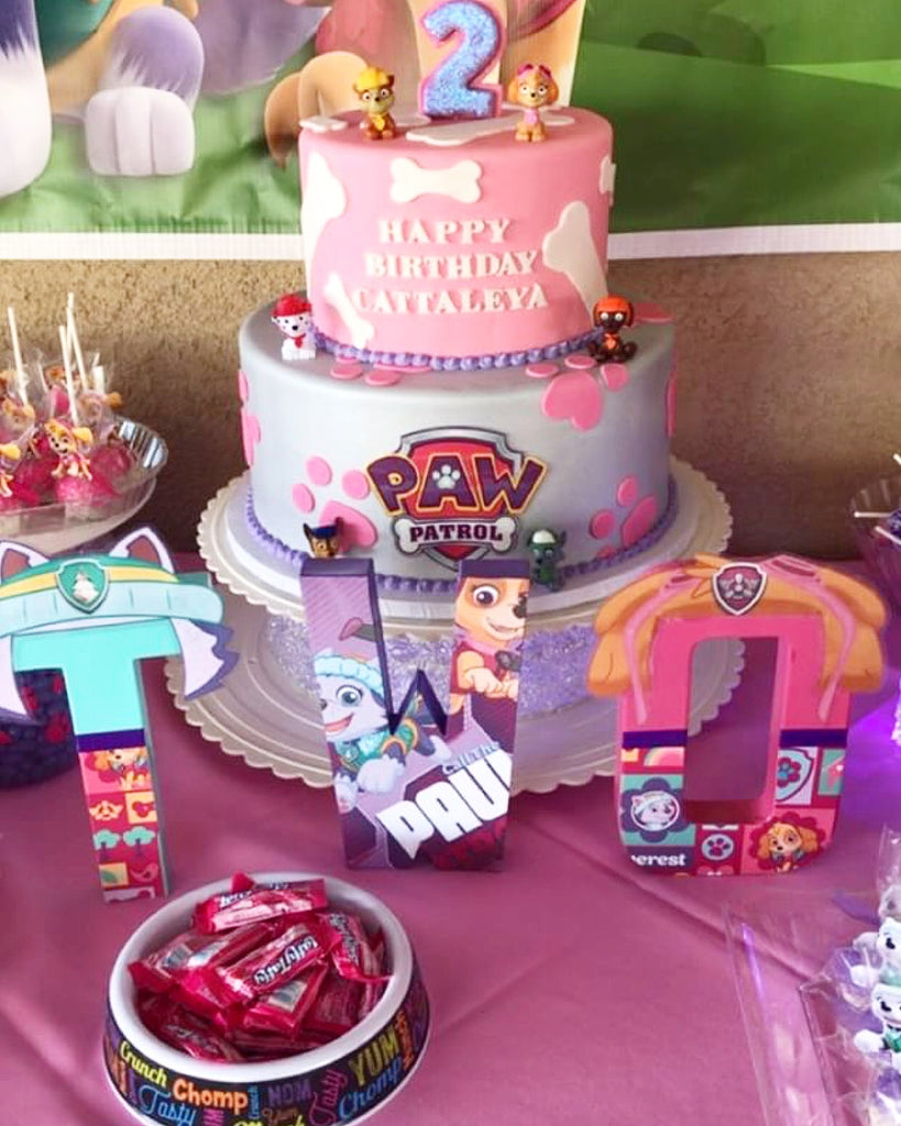 Buy 8 Inch Custom Themed Letter Set Birthday Party Decor At