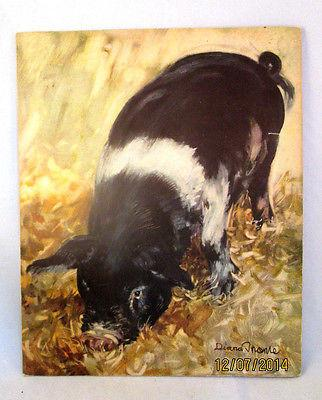 Farm Animals Paintings By Diana Thorne Saalfield Publishing Co, Akron Ohio 1935 - Gramma-zon