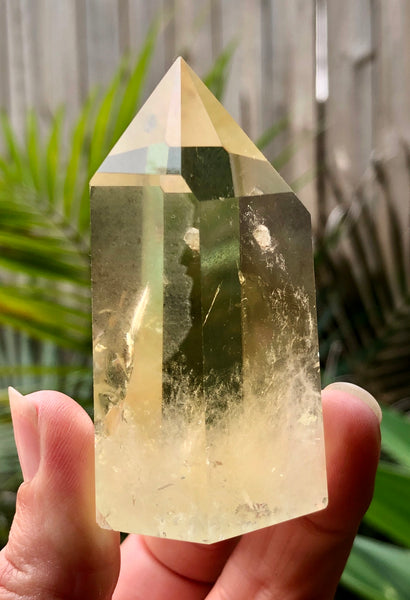 Citrine Generator- Willow Tree Soul Gifts - 3
