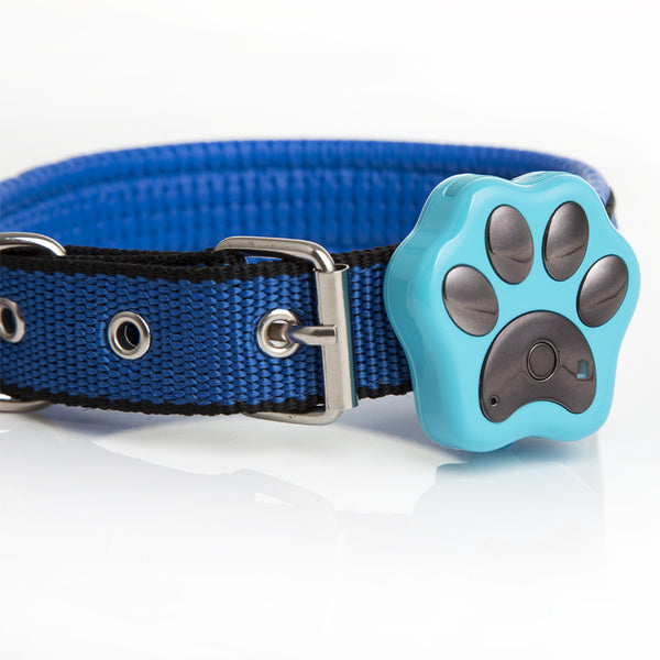 Pet Gps Tracking Devices For Dog And Cat Collar Pawtracker