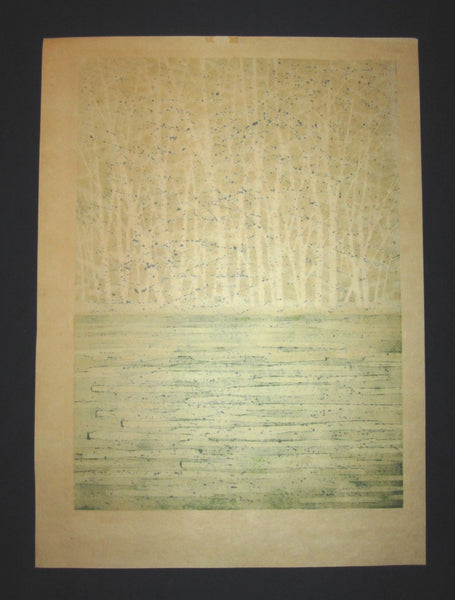 Huge Orig Japanese Woodblock Print Fujita Fumio Pencil-Sign Limit# Green Image