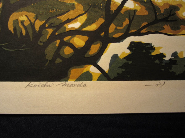 HUGE Orig Japanese Woodblock Print LIMIT # Pencil Sign Koichi Maeda Early Spring  1981