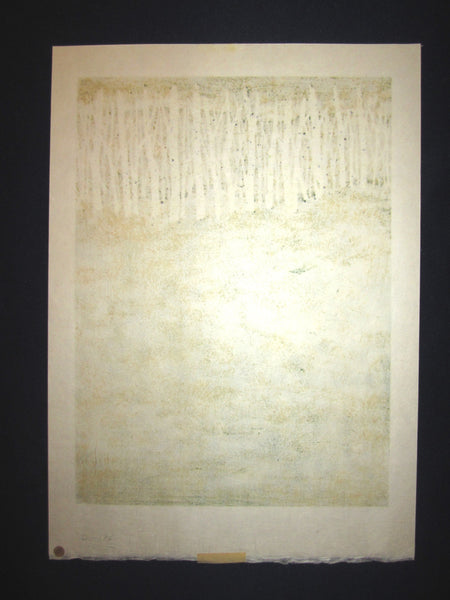 Original Japanese Woodblock Print Pencil-Signed Limited-Number Fujita Fumio New Green A