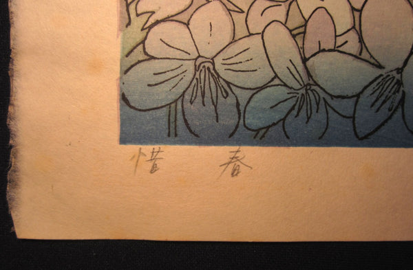 A Huge Original Japanese Woodblock Print PENCIL SIGN Chizuko Yoshida Don't Waste Spring