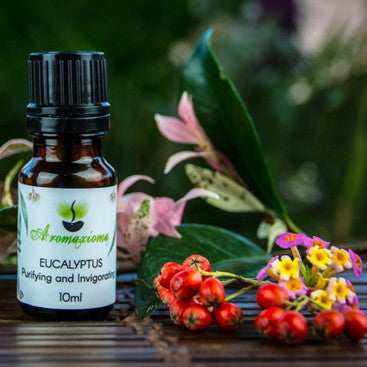 Eucalyptus Australian Essential Oil - Blue Mallee - Out of stock