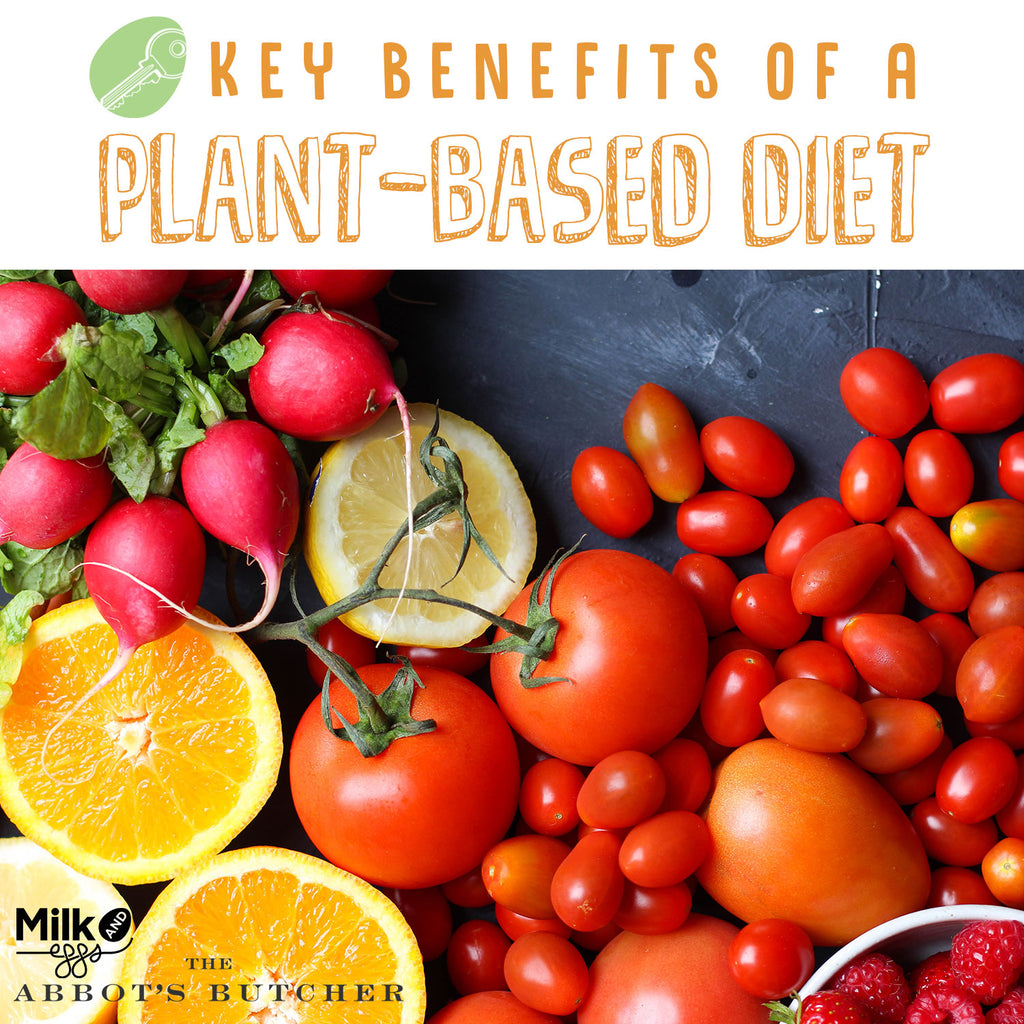 The In's and Out's of a Plant-Based Diet