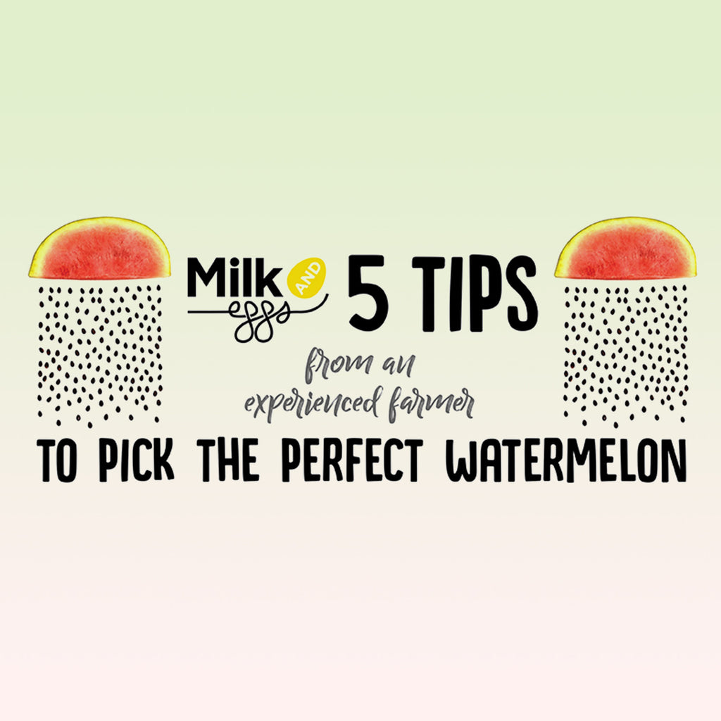 5 Tips to Pick The Perfect Watermelon