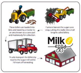 Milk & Eggs Farm Grocery Delivery! Fresher Foods, Better Health ...