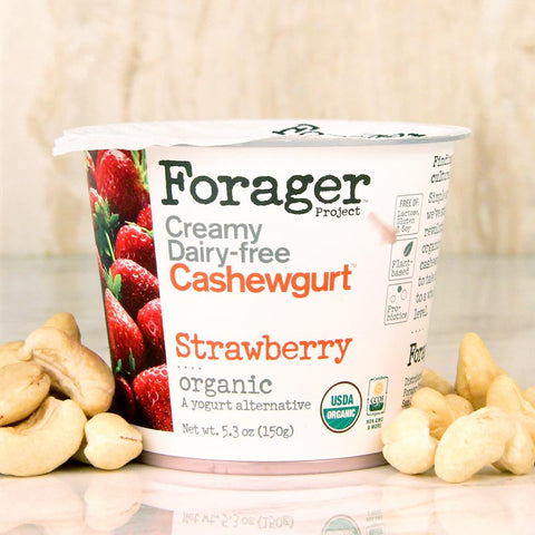 Forager Strawberry Cashewgurt