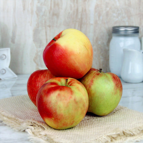 Apple Honeycrisp Organic