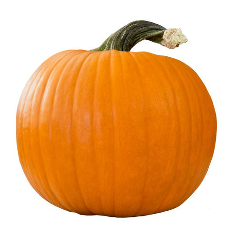 Pumpkin Medium