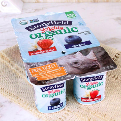 Yogurt - Stonyfield Organic YoKids Yogurt Blueberry/Strawberry & Vanilla
