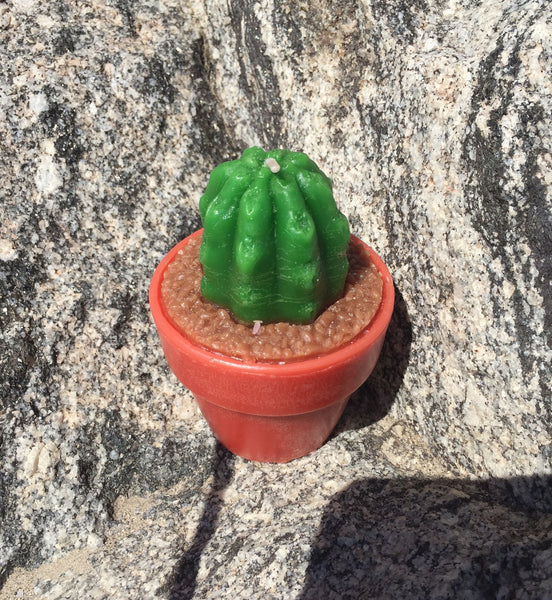 Small Cactus Candle