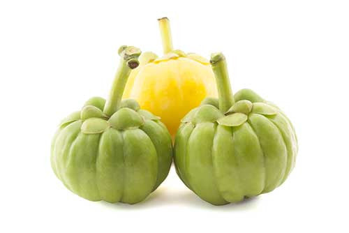 BENEFITS OF GARCINIA CAMBOGIA SUPPLEMENT