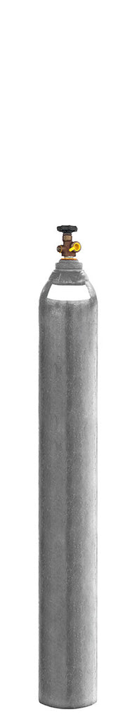 D Size Nitrogen Gas Bottle/Cylinder