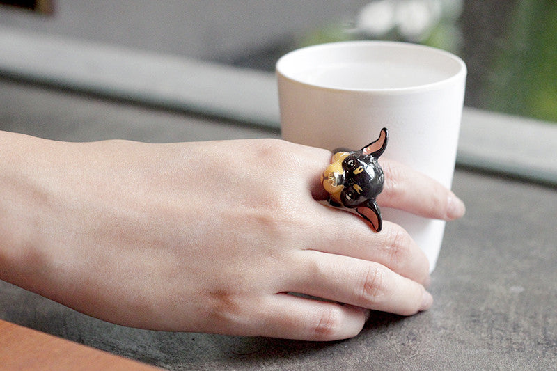 Brownie Chihuahua Ring | DOGS