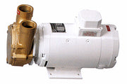 "1½"" Bronze Reversible Self-priming Liquid Ring Pump 24v d.c.  CP40-24V"