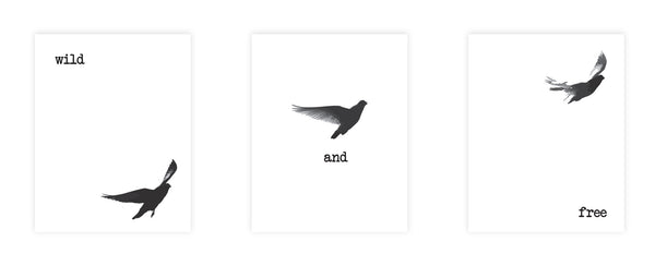 Print or Canvas,  Collection Wild And Free Black Birds Set Of 3