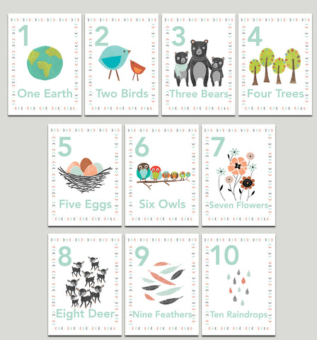 Our World Nature Themed 5 x 7 Counting Cards in English, Spanish or Dutch