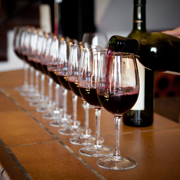 Wine Tasting Experience Course