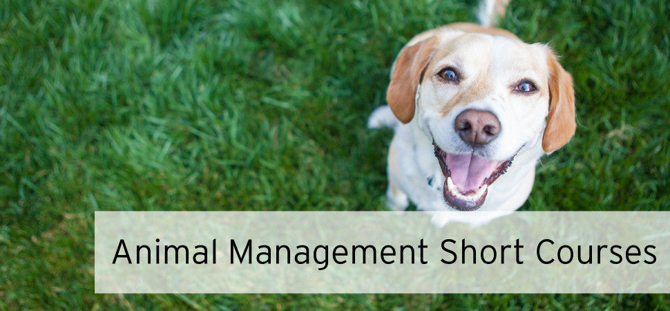 Animal Management Short Courses