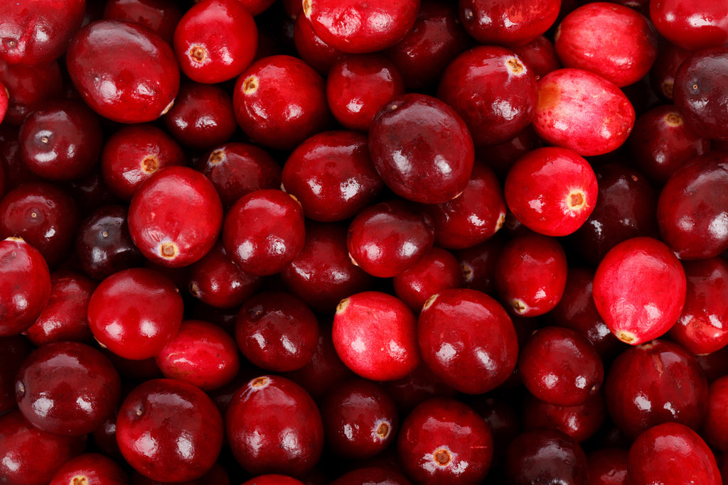 Recipe | Cranberry Chutney Sauce