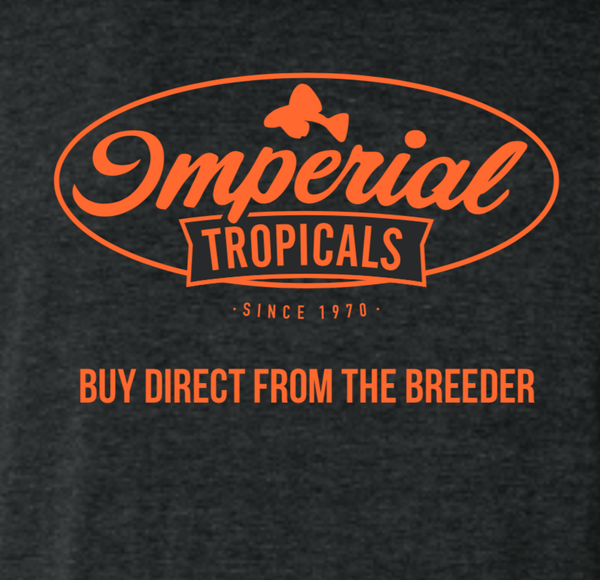 Imperial Tropicals Short Sleeve T-Shirt - Imperial Tropicals