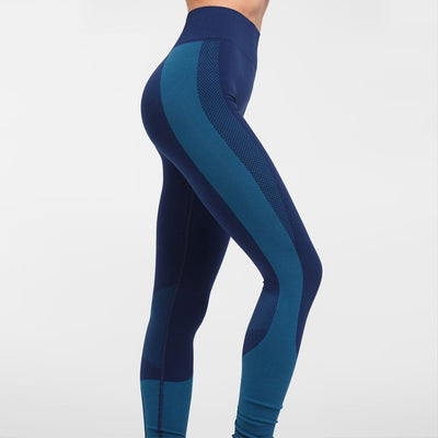 Zarely leggings-women Maia Blue Seamless Leggings