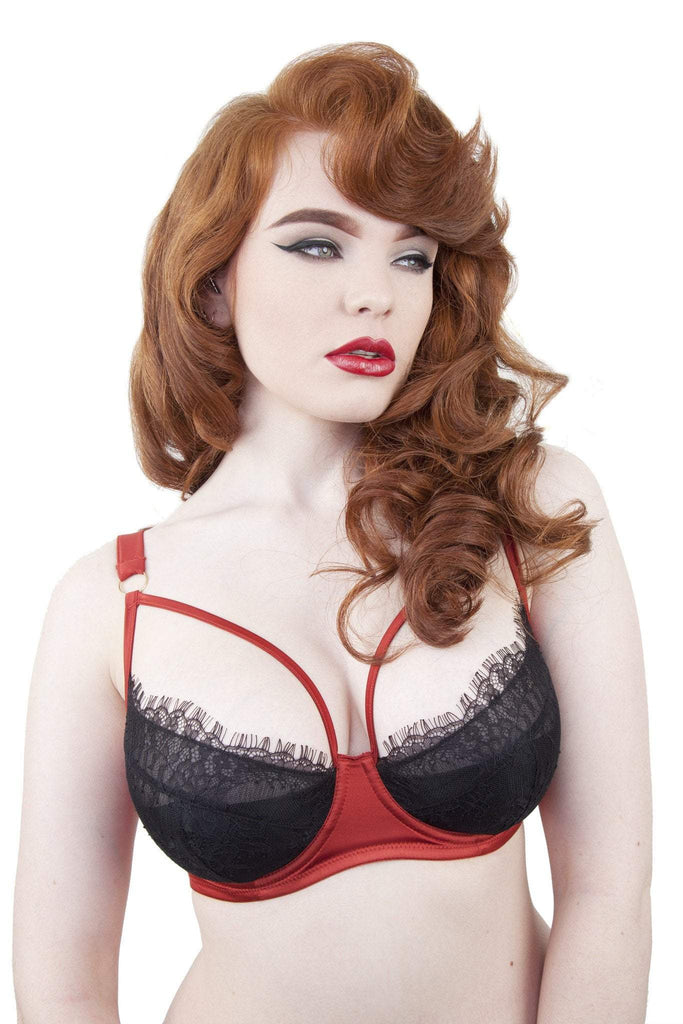 Tamara Rust and Black Lace Bra DD-G Cups