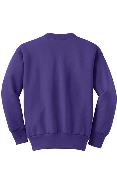 Youth Fleece Sweatshirt (Sizes XS - XL)