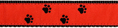 Black Paws on Red Belt