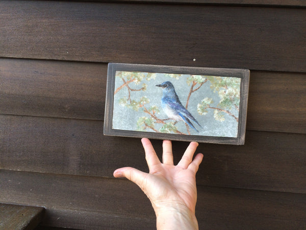 mountain_bluebird_wooden_plaque_on_house