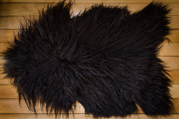 Large Black, Medium Coat Icelandic Pelt (642-1)