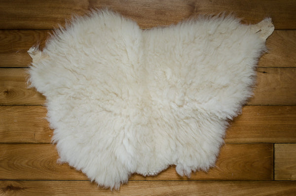Small White, Short Coat Icelandic Pelt (486-1)