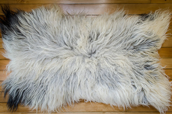Large Black & White, Long Coat Icelandic Pelt  (476-1)