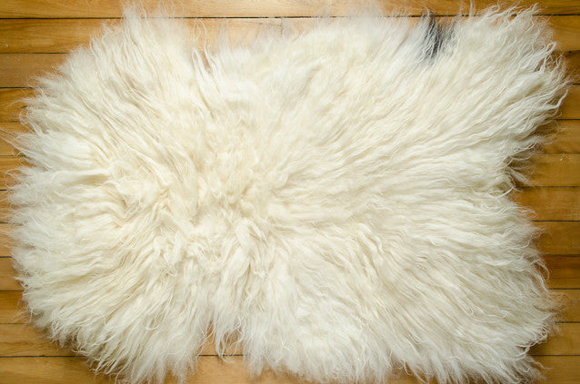 Large White, X-Long Coat Icelandic Pelt (451-12)