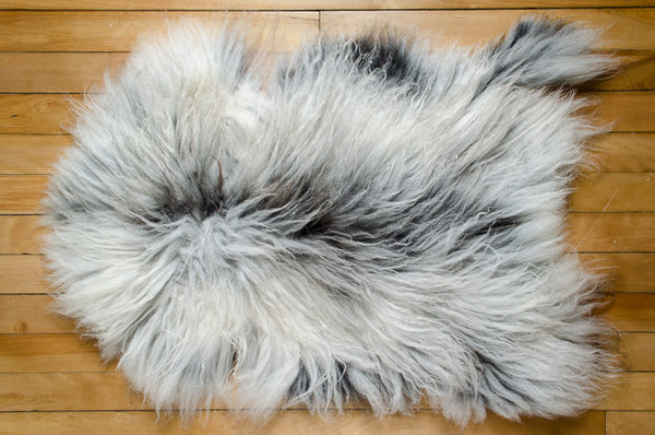 Large White/Grey, Long Coat Icelandic Pelt (451-7)